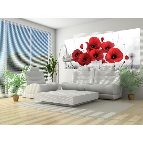 Flori de mac - fototapet