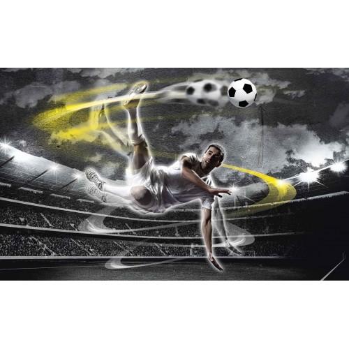 Fotbalistul pe stadion - fototapet