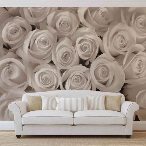 Oaza de trandafirii albi - fototapet