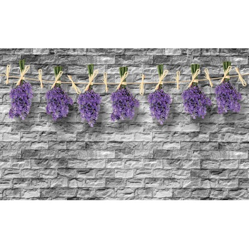 Fototapet levanțica, zid de cărămizi
