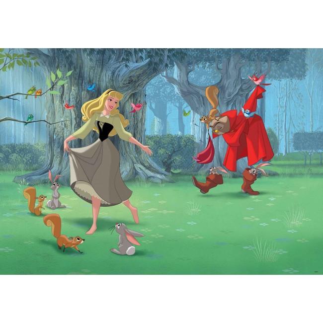 Prințesa Cenușăreasa cântă și dansează - fototapet copii