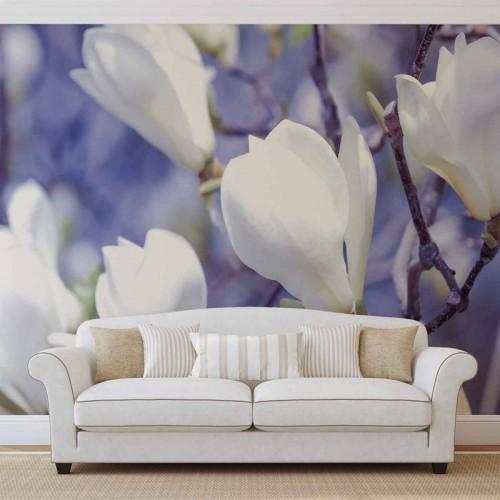 Magnolii albe - fototapet