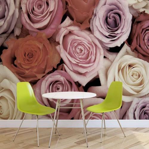 Oaza de trandafiri roz-mov-rosu - fototapet