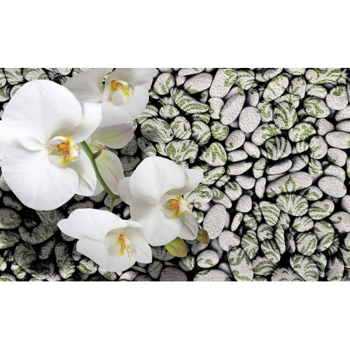 Orhidee pe fundal pietros - fototapet