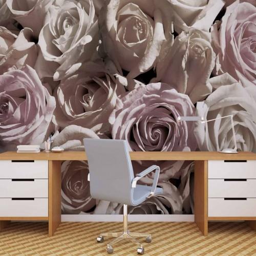Trandafiri elegante - fototapet