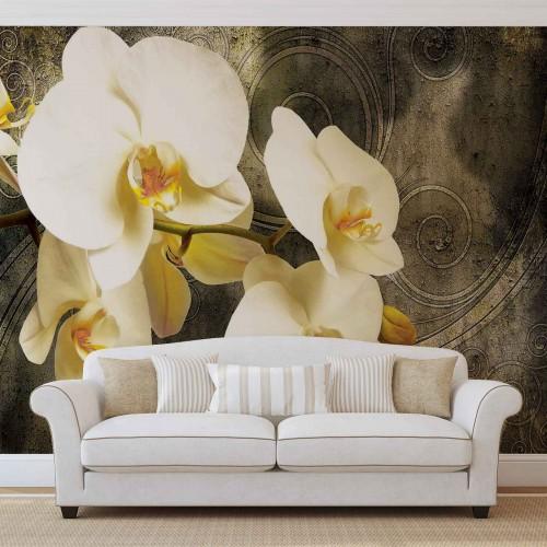 Orhidee galbena - fototapet