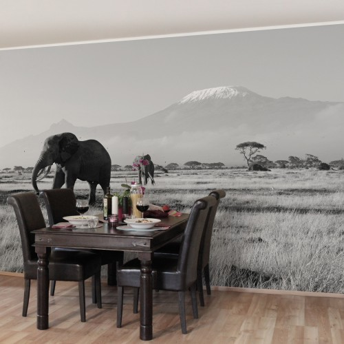 Elefanti. Kilimanjaro - fototapet animale