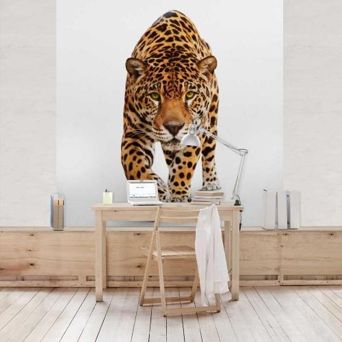 Jaguar înfiorător - fototapet animale