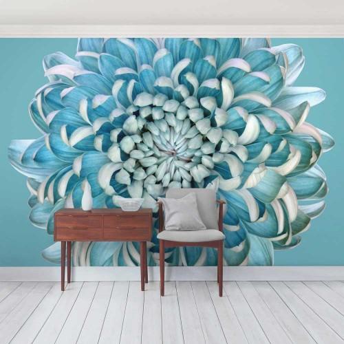 Crizantemă albastră - fototapet vlies