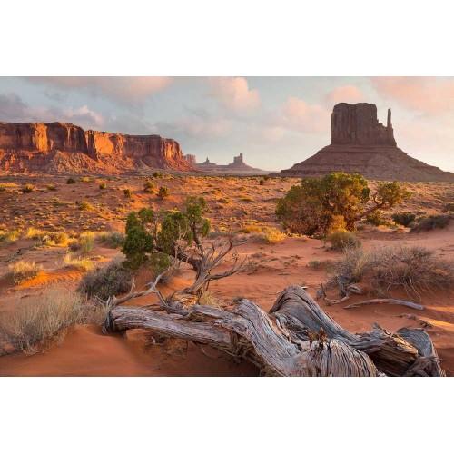 Monument Valley Navajo Tribal Park din Arizona - fototapet vlies