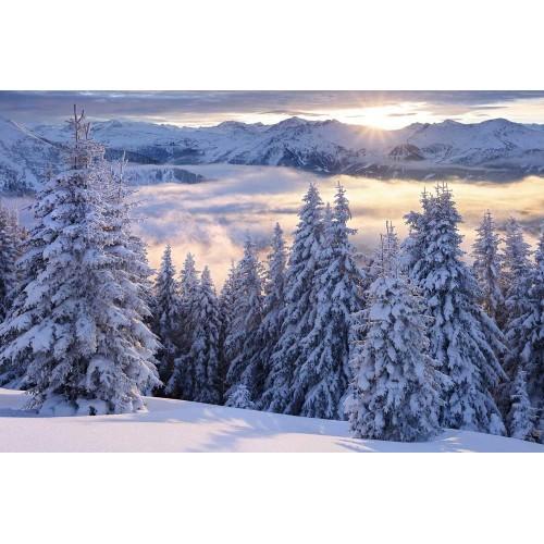 Vedere spre Hohen Tauern din Austria - fototapet vlies