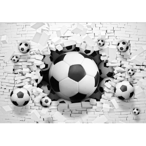 Fototapet 3d Minge fotbal - 3383VE
