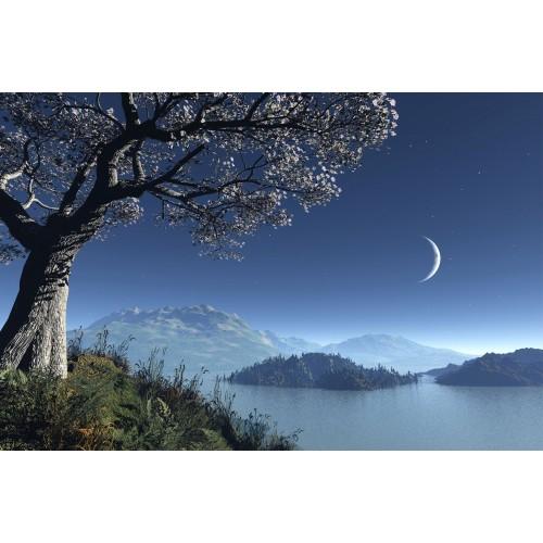 Fototapet peisaj Cerul iarna 95047