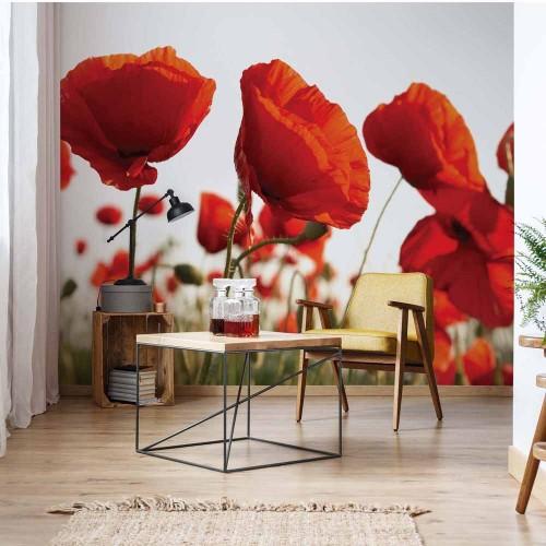 Fototapet floral Macii 1639VE