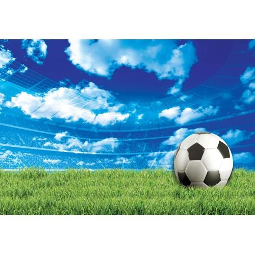 Fototapet sport Minge fotbal 3388VE