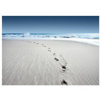 Fototapet Plimbare pe plajă no.222
