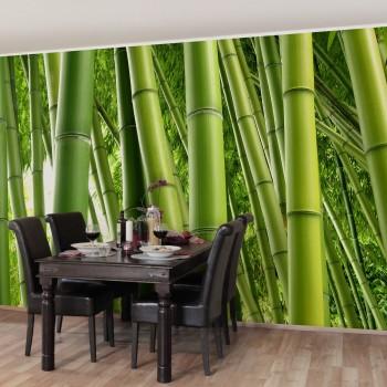Fototapet Bambus 109030