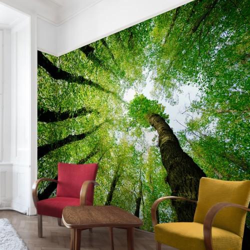 Copacul vieții - fototapet vlies