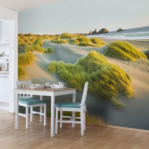 Dune de nisip si iarba la mare - fototapet vlies