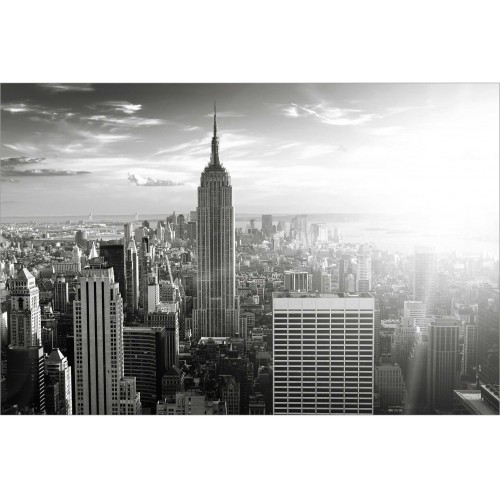 Manhattan in nuante de gri - fototapet vlies