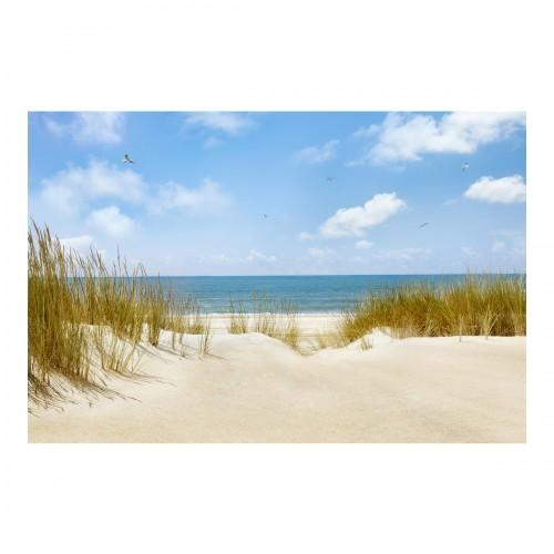 Plaja din Marea Nordului - fototapet vlies