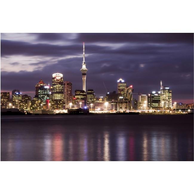 Auckland in noapte - fototapet vlies