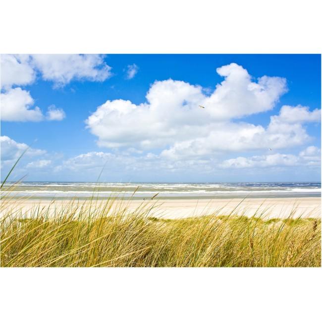 Coasta Nordului - fototapet vlies
