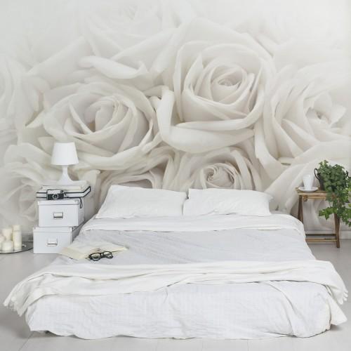 Trandafiri albi - fototapet vlies