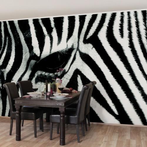 Zebra print - fototapet animale