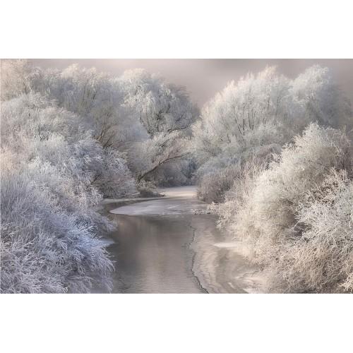 Cântec de iarnă - fototapet vlies
