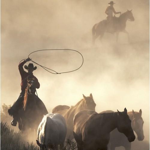 Cowboys - fototapet vlies