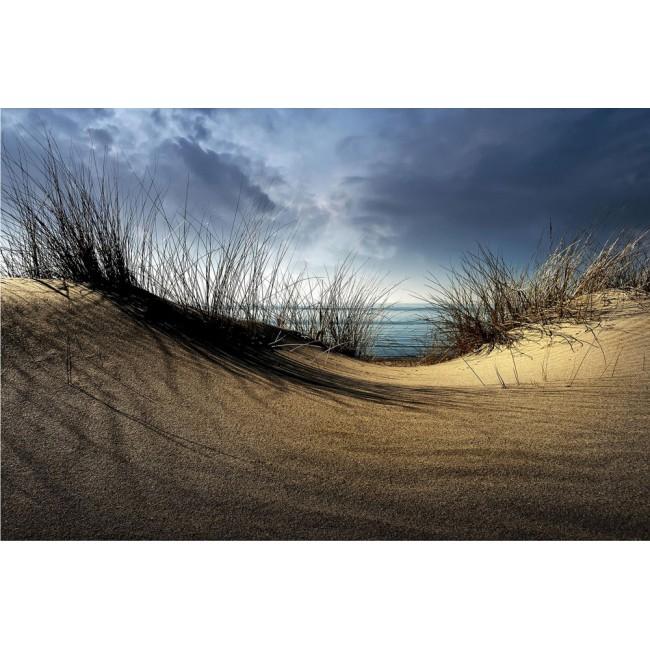 Dună de nisip - fototapet vlies