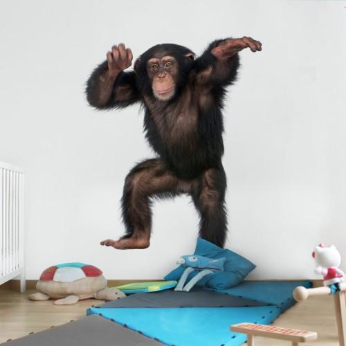 Maimuța amuzantă - fototapet animale